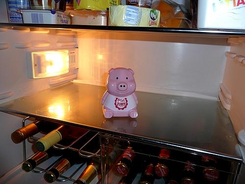 Kühlschrank Glasplatte : Kann mal jemand einen blick in seinen kühlschrank werfen