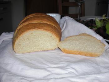 Brot Brötchen backen 01 05 07 05 2010 110622036