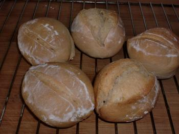 Brot Brötchen backen 23 10 29 10 2010 1735638611