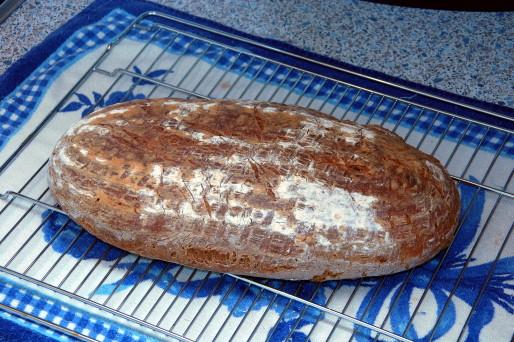 Brot Brötchen backen 01 05 07 05 2010 3517919320
