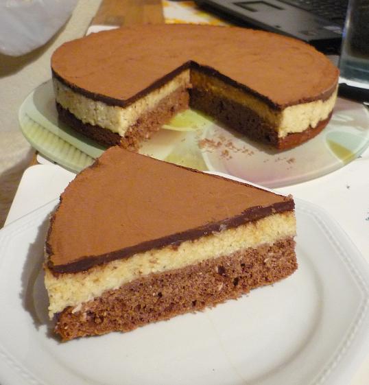 Saftiger Schokokuchen Mit Griess Kokos Belag Torten Kuchen