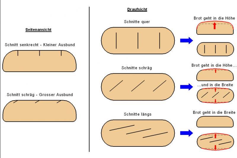 Brot Reisst Unten Seitlich Auf Brot Brötchen Forum Chefkochde
