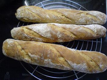 Brot Brötchen backen 23 10 29 10 2009 1470396610