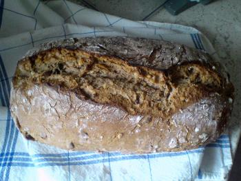 Brot Brötchen backen 01 05 07 05 2010 1853002411
