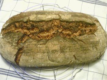 Brot Brötchen backen 01 05 07 05 2010 3369972961
