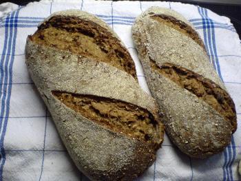 Brot Brötchen backen 23 10 29 10 2010 2798891510