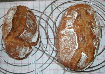 Brot Brötchen backen 23 10 29 10 2010 3087772531