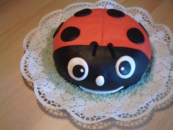 Suche Marienkaferkuchen Torten Kuchen Forum Chefkoch De