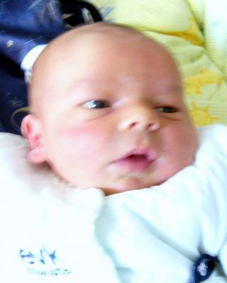 CdTS 50 5 Juli 2007 unsere Rosi Geburtstag 3671212513